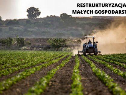 Pomoc na rozpoczęcie działalności gospodarczej na rzecz rozwoju małych gospodarstw